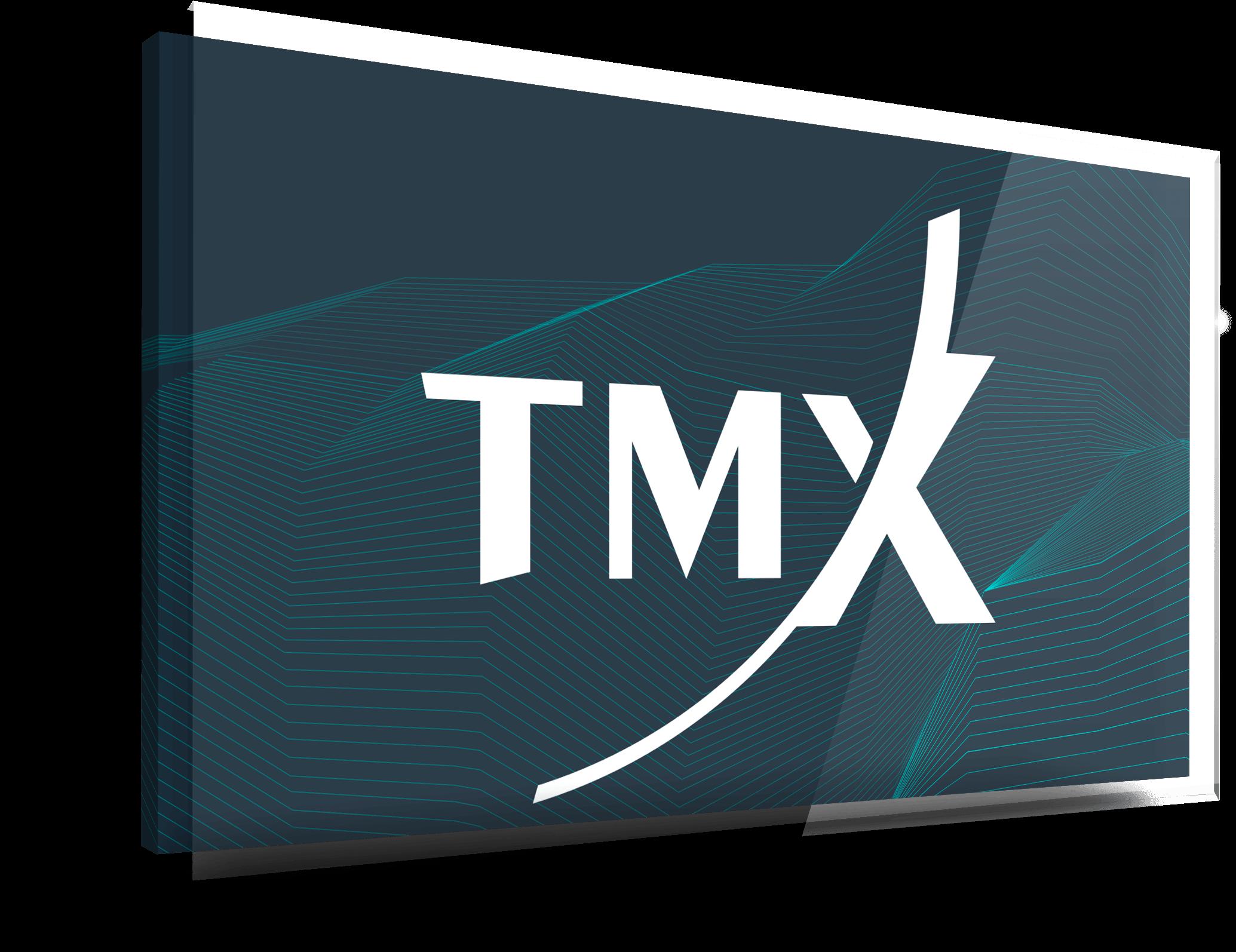 TMX screen (1)